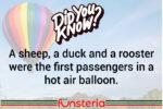 Ballooning Over The Barnyard