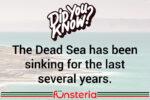 The Dropping Dead Sea