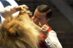 Lion Tamer Experience