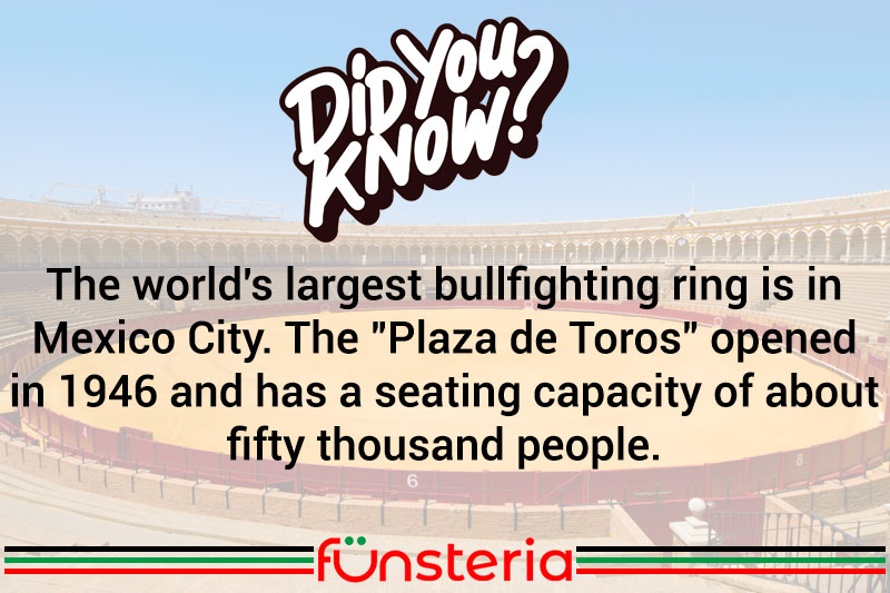 That's A Lot Of Bull...Fighting.