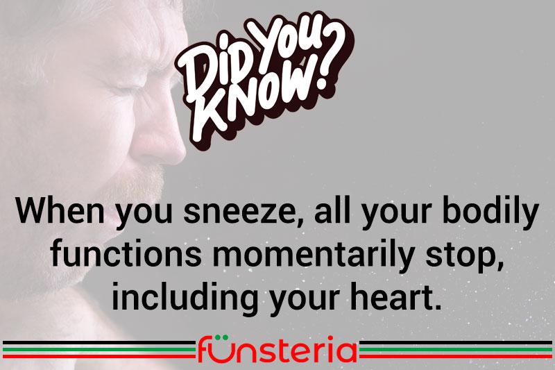Don't Stop Sneezing
