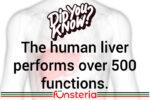Liver Trivia